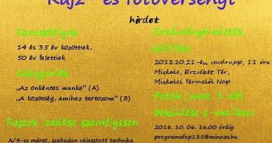 A MINŐIES Alapítvány pályázatának plakátja